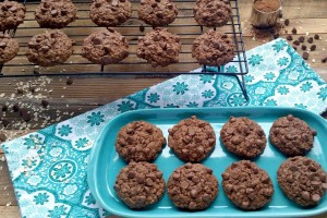 Double Chocolate Oatmeal Cookie