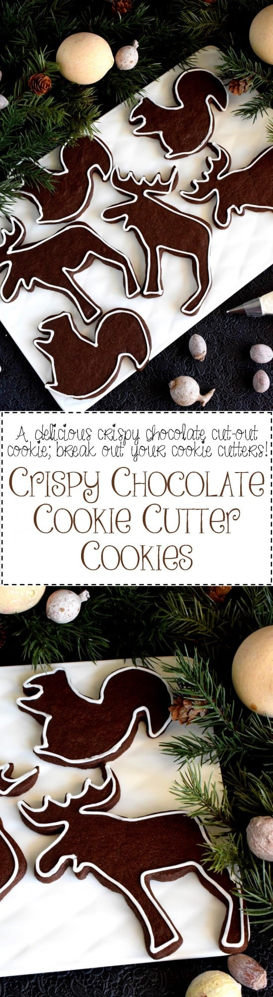 Crispy Chocolate Cookie Cutter Cookies