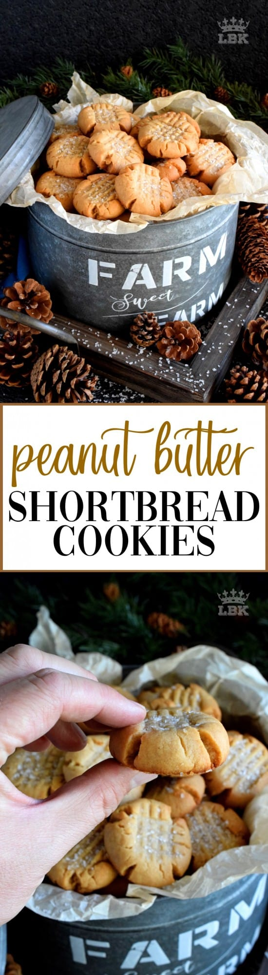 Peanut Butter Shortbread Cookies - Shortbread is a classic, but adding peanut butter to your shortbread cookie recipe is a great way to add a little holiday flair! #shortbread #peanutbutter #cookies #christmas #holiday #baking