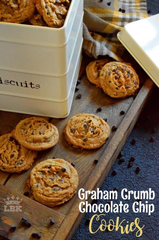 Like the name implies, Graham Crumb Chocolate Chip Cookies are made with crushed graham crumbs, chocolate, and even brown sugar. These are the best cookies you'll ever eat!#graham #cracker #crumb #chocolate #chip #cookies