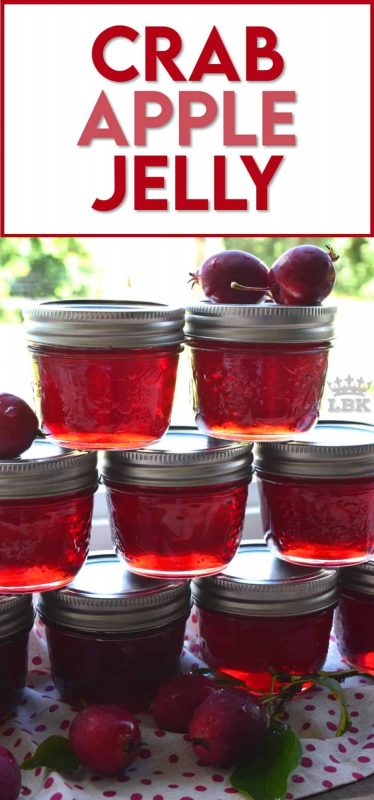 Easily transform those overly tart backyard crab apples into the most delicious Crab Apple Jelly!  All you needs is crab apples, water, and sugar! #crab #apple #crabapple #jelly #preserves