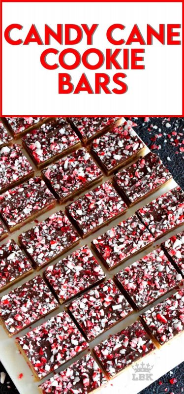 Soft and moist Candy Cane Cookie Bars which are baked in a sheet pan, smeared with melted chocolate, and topped with more crushed candy canes - a new holiday favourite! #candycane #cookies #cookiebars #christmas #holiday #baking