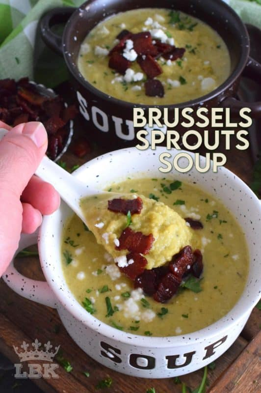 A creamy and delicious soup prepared with the help of a few aromatic vegetables. Love them or hate them, Brussels Sprouts Soup really is a dish for everyone, because if you don't tell them, they won't know! #brusselssprouts #sprouts #soup #vegetariansoup #vegansoup #vegan