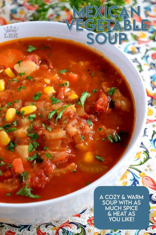 The pleasant flavours of Mexican Vegetable Soup are sure to keep you warm and cozy during the colder days of winter. Made with common root vegetables and flavoured with Mexican-inspired spices, a big bowl of this soup is sure to brighten even the dreariest of days. #mexican #vegetablesoup #mexicansoup #vegetarian