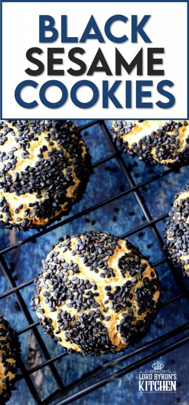 Fashioned after the traditional Sicilian Biscotti Regina, Black Sesame Citrus Cookies are tart and sweet with a crunchy exterior and a melt-in-your-mouth center.  Unique and different, these cookies not only taste great, but are made to impress and spark conversation! #sicilian #italian #blacksesame #italiancookies #citrus