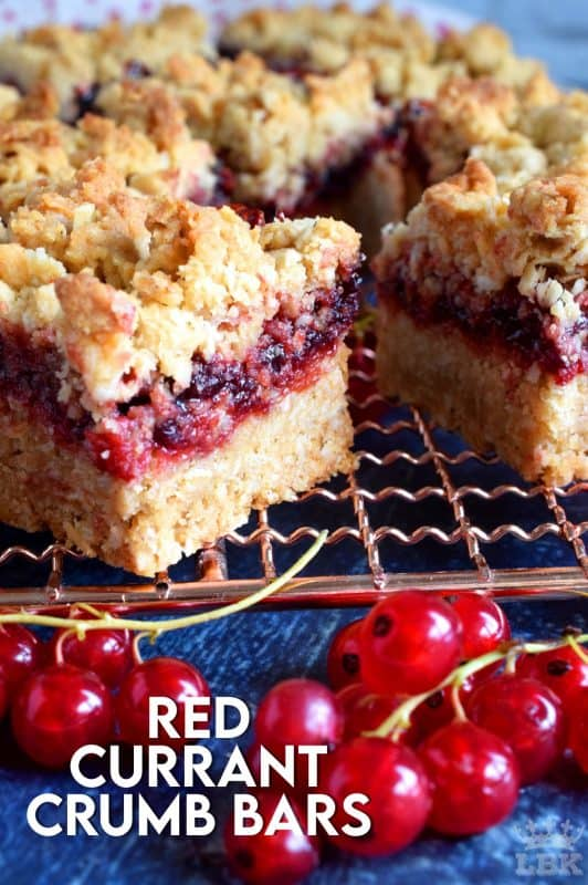 So fast, so easy, and so delicious! Red Currant Crumb Bars are a great dessert anytime, but also a delicious weekend brunch item! It's as easy as spreading homemade red currant jam between two layers of crumb topping! #red #currant #crumb #topping #bars #squares #redcurrants