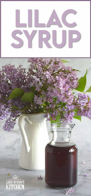 Lilacs are in full bloom right now, and if you're lucky enough to have a few trees near your house, I'm sure you can smell that lovely fragrance. Did you know that lilac petals are edible? Lilac Syrup is made with fully-bloomed lilac petals and is a great way to infuse some of your favourite early summer recipes with the lovely scent and a slightly citrus-like taste. #lilac #simplesyrup #cookingwithlilacs #lilacs #edibleflowers